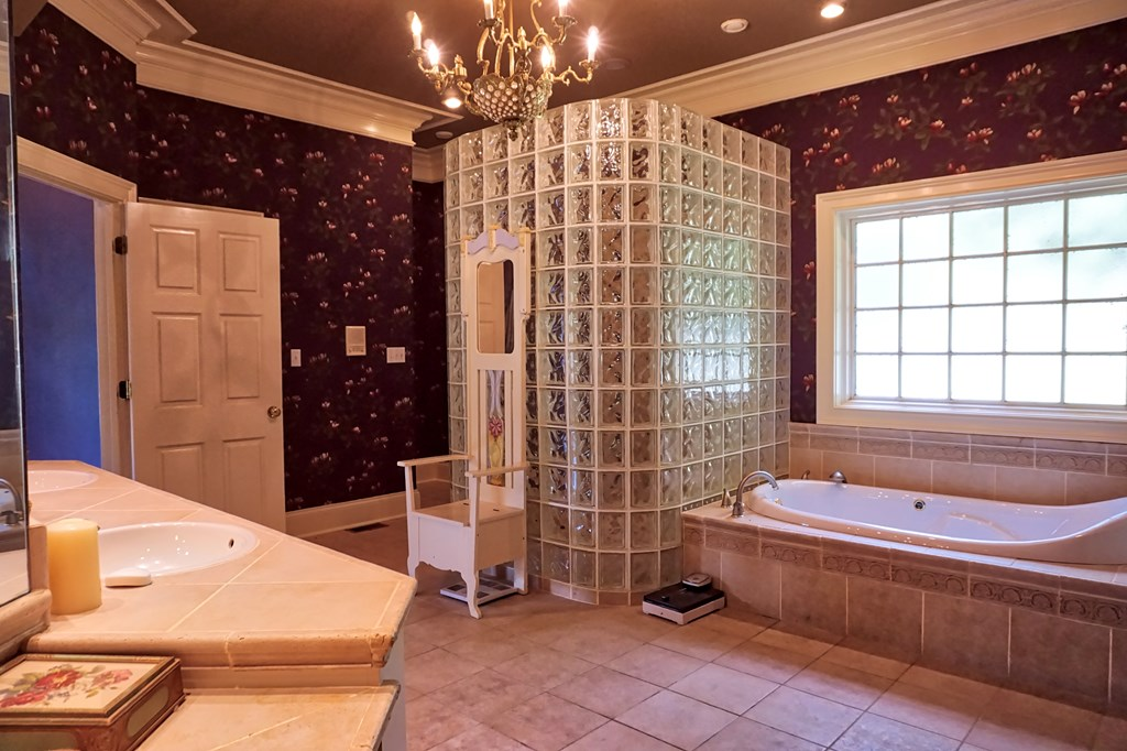 Master Tub and Shower/exquisite faucet